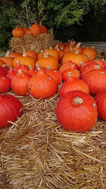 Herbstliche Safran Drogerie-Gruesse