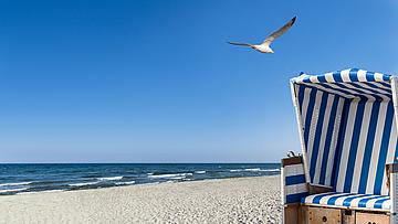 Strandkorbgrüsse von der Safran Drogerie